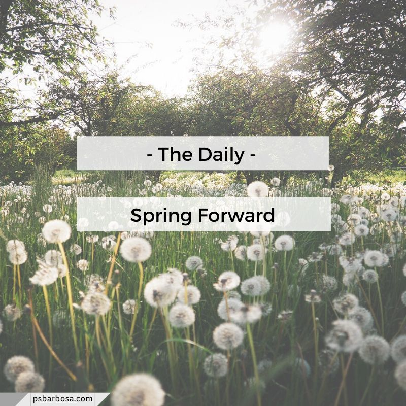 The Daily - Spring Forward