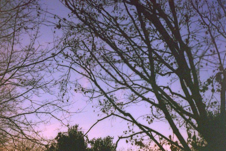Twilight's End - psbarbosa.com